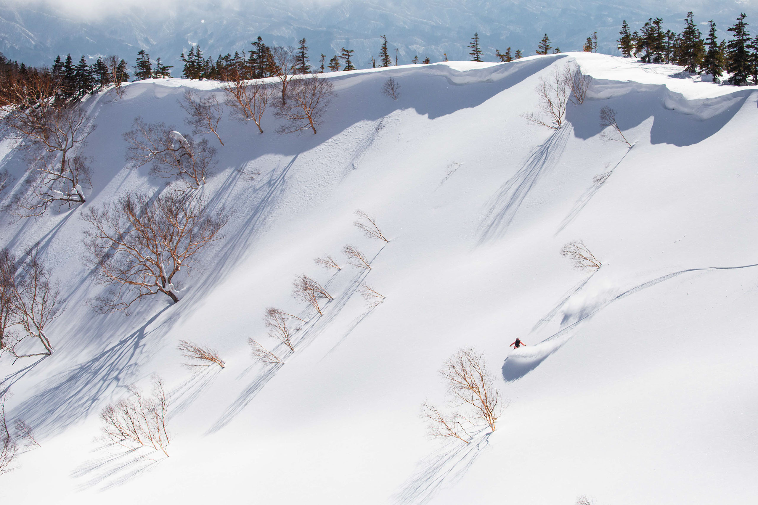 Hakuba Powder Run First Tours