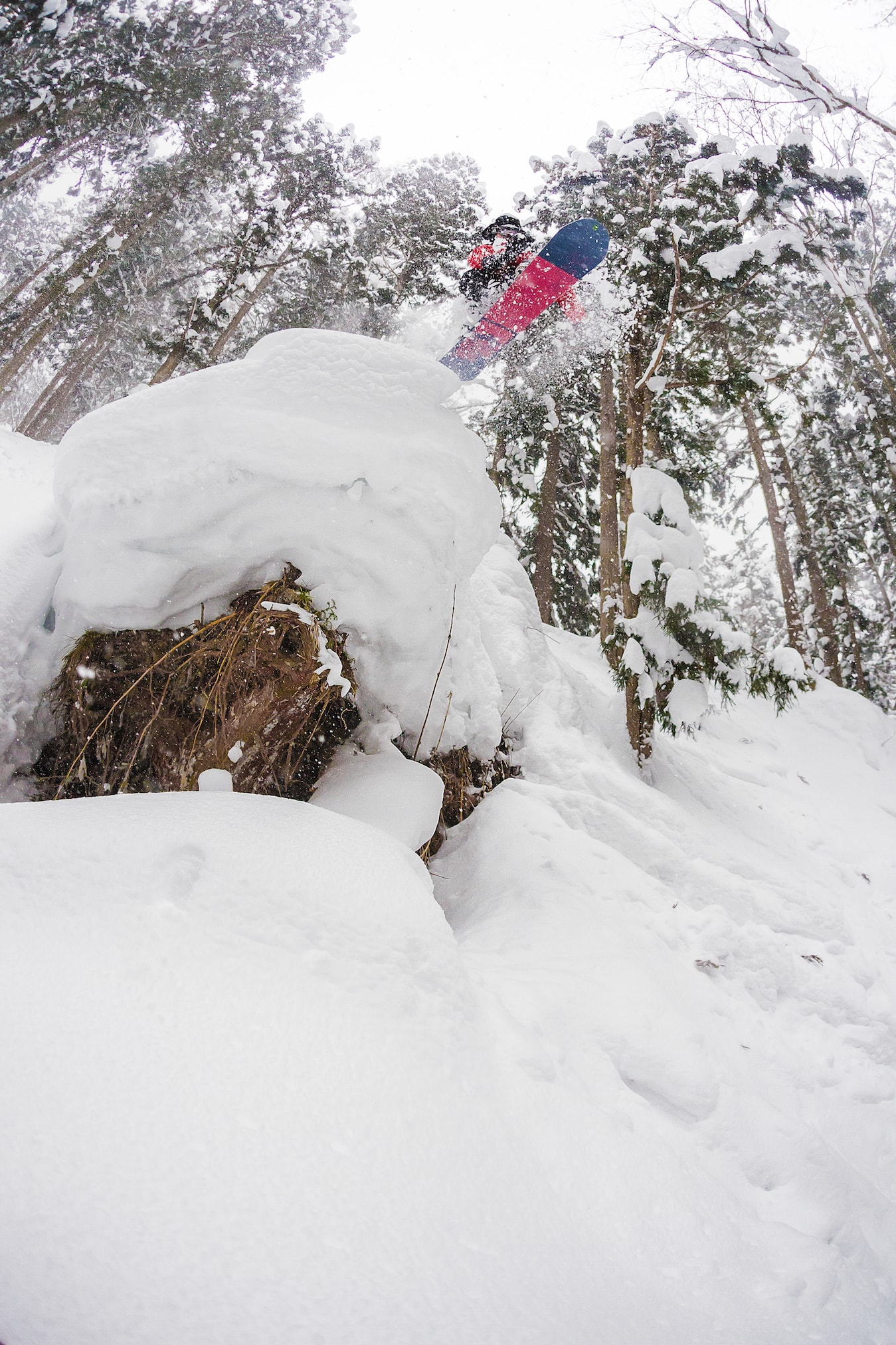 Cliff Drop snowboarden in Nozawa Onsen during Powder Culture Tour with First Tours
