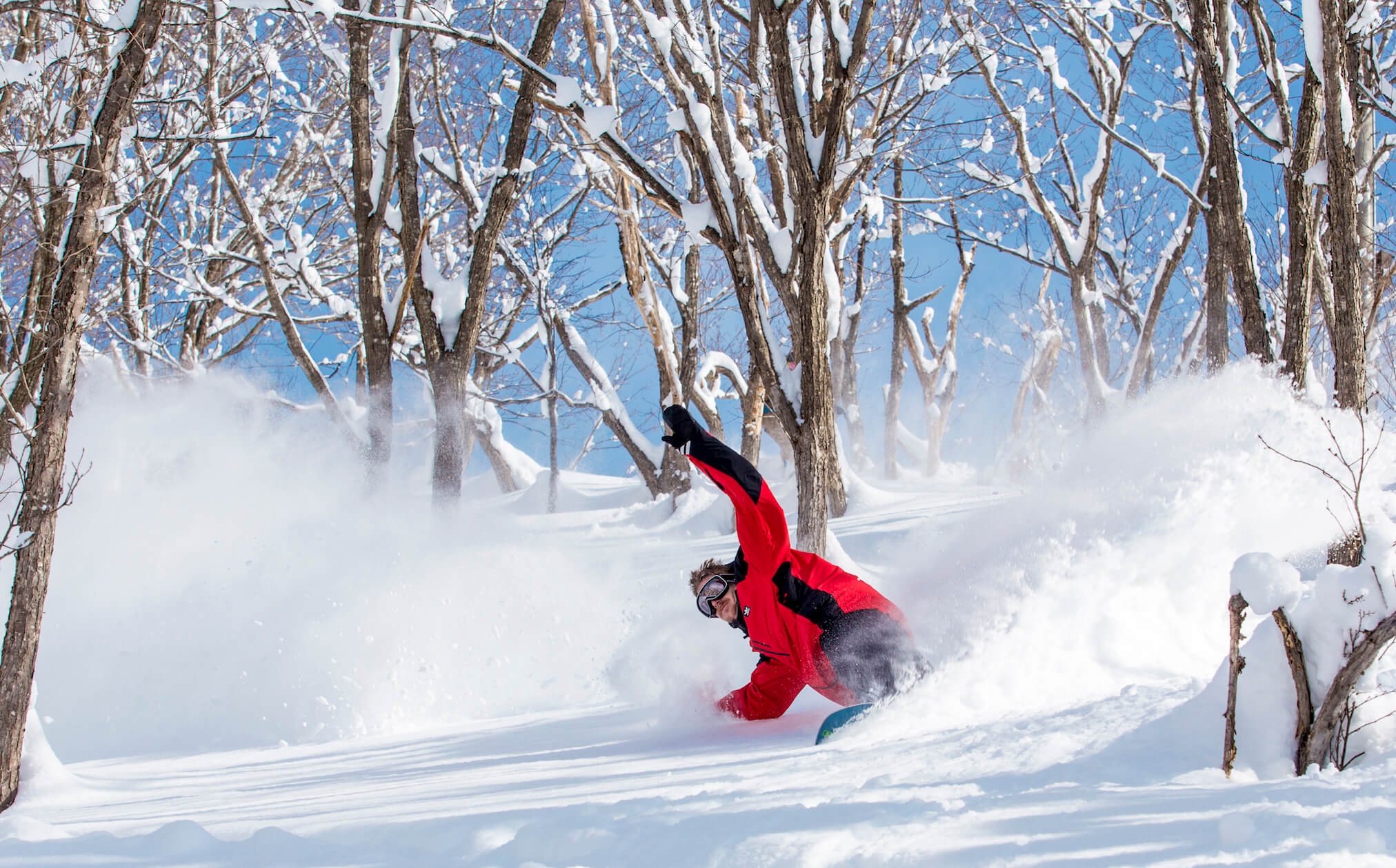 Powder turns in Nozawa Onsen during Powder Culture Tour with First Tours