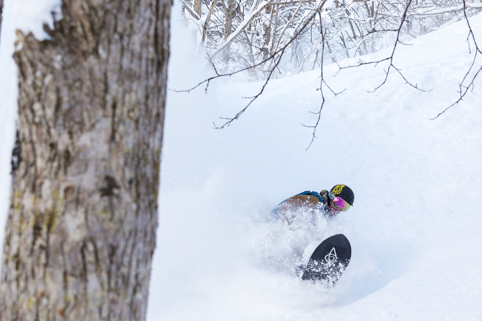 Treeruns in Nozawa Onsen during Powder Culture Tour with First Tours