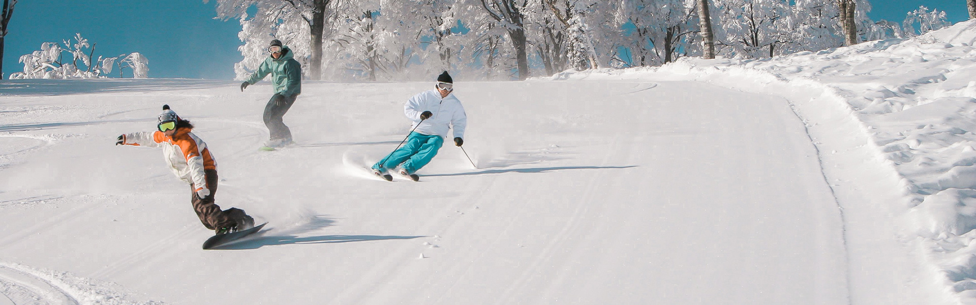 skiers and snowboarder on a slope First Tours
