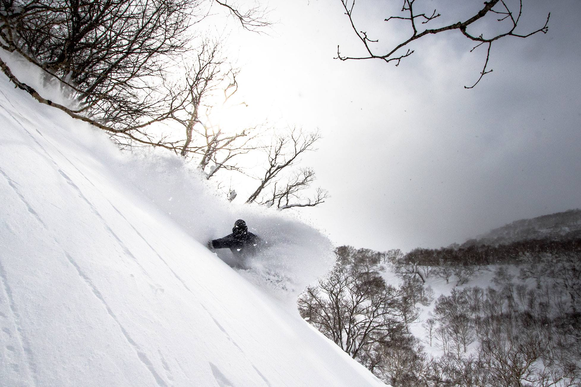 snowboarding powder in hakuba First Tours