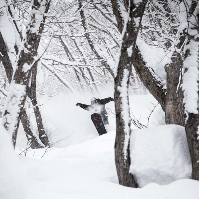 Snowboarder jumps in powder First Tours