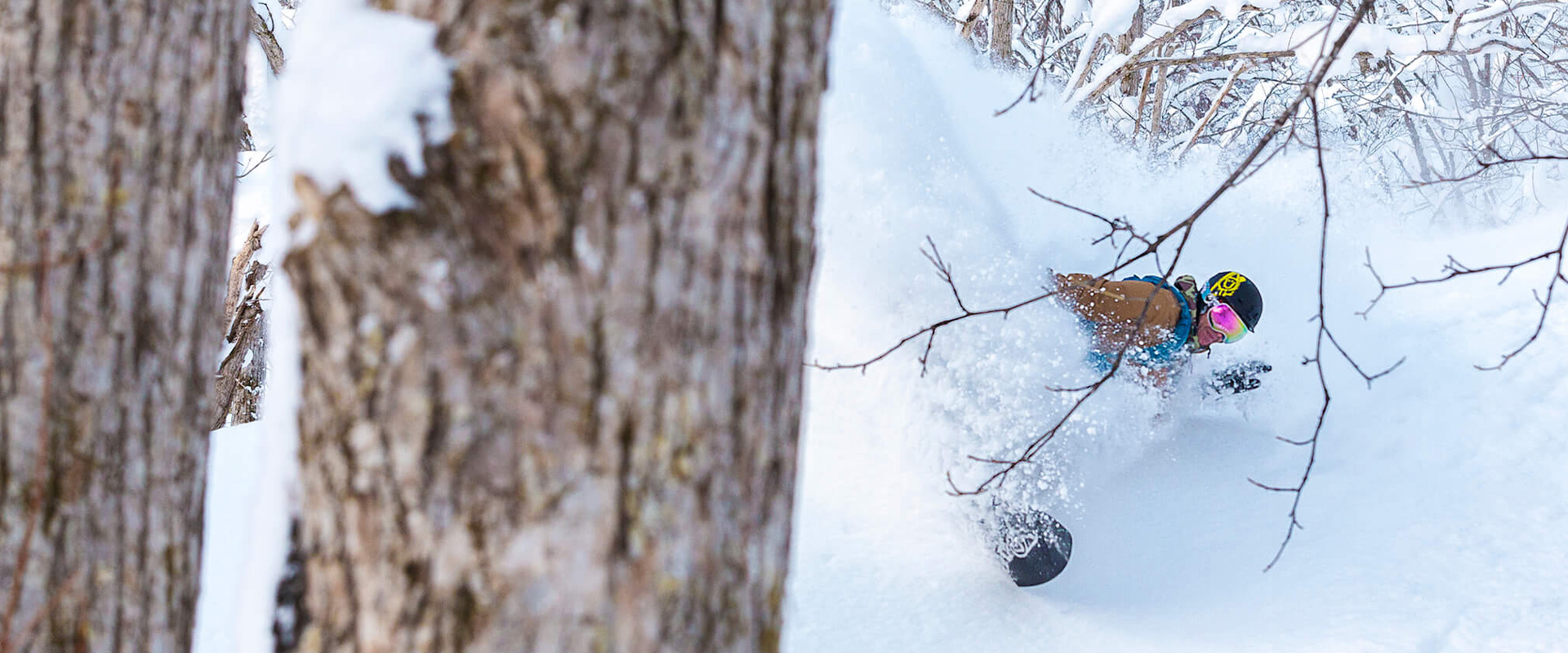 Big powder turn in Japanese forest during Powder Culture Tour with First Tours