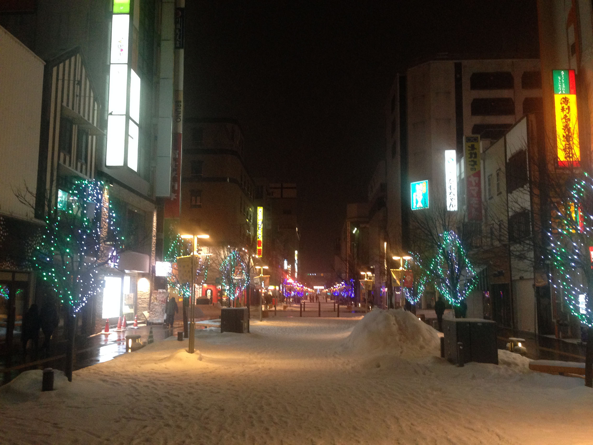 Asahikawa by night